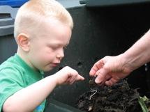 Andrew_Compost Worm